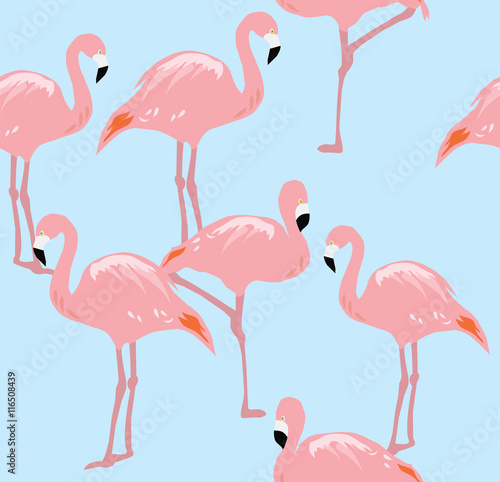 Canvas Prints Flamingo Bird vector flamingo seamless background