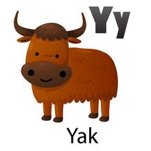 Alphabet Letter Y-Yak