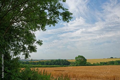 Fotografiet  Lincolnshire Wolds Farmland,UK
