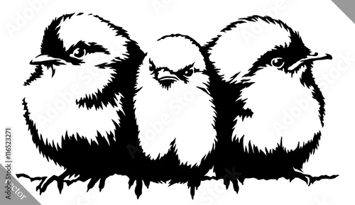 black and white paint draw Sparrow bird vector illustration