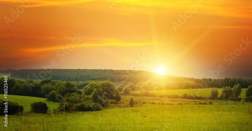 Obraz field, sunrise and blue sky - fototapety do salonu