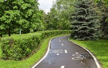 Walking Bike Path In The Park. Bike Road In Nature. Bike Trail. Road For Bicycles Surrounded By Nature.