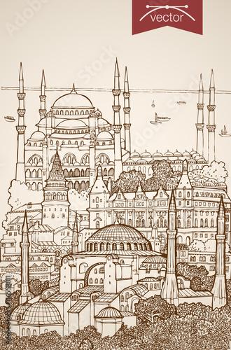 Vászonkép Engraving vintage hand drawn vector Turkey Istanbul Sketch