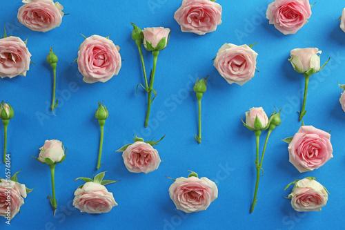 Garden Poster Pink Fresh roses on blue background