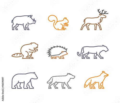 Vector set figures of wild animals Fototapeta