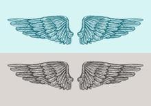 Hand Drawn Vintage Angel Wings. Sketch Vector Illustration