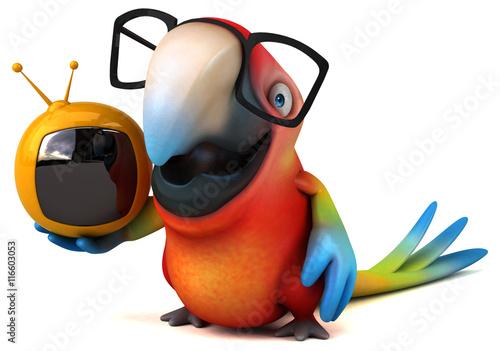 Canvas Prints River, lake Fun parrot