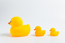Sort By Size Side View Three Yellow Rubber Ducks Isolate On White Background