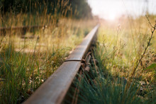 Old Rails Lie In The Grass