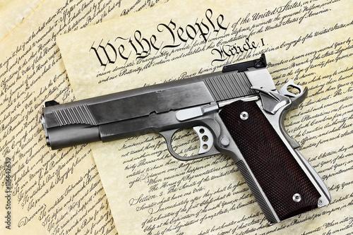 Vászonkép Hand Gun and Constitution