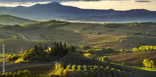 Słynny toskański pejzaż.Słoneczny poranek w Toskanii,Val d'Orcia,Włochy - fototapety na wymiar
