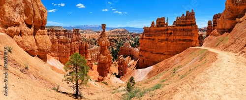 Vászonkép Bryce Canyon National Park panorama with famous Thor's Hammer hoodoo, Utah, USA