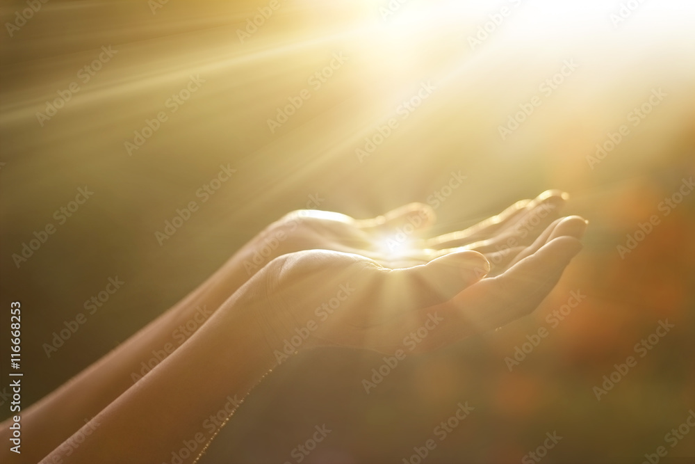 Fototapety, obrazy: Respect and pray, human hands on nature background