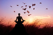 canvas print picture - Woman meditation and yoga with birds, silhouette on nature sunset