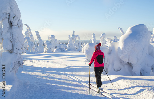 Tuinposter Wintersporten Woman cross country skiing in Lapland Finland