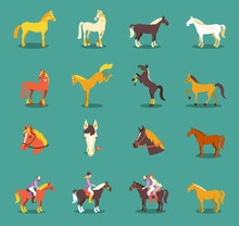 Group Of The Horses Isolated O...