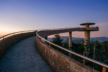 Clingman's Dome In The Great S...