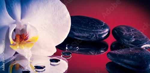 Láminas  Orchidea Bianca con pietre nere e gocce di rugiada