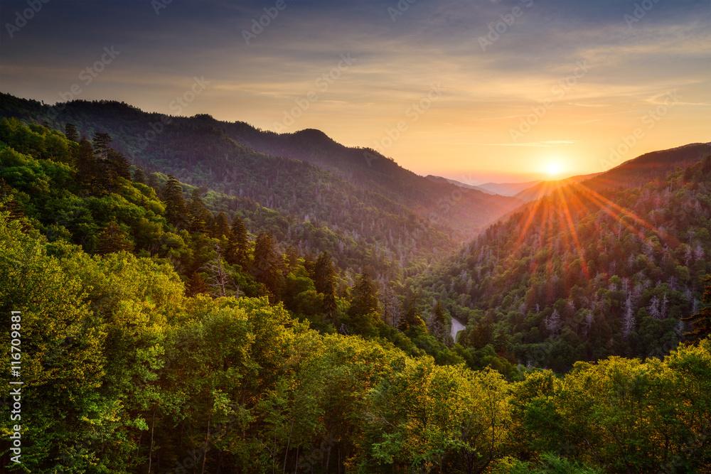 Fototapety, obrazy: Newfound Gap in the Smoky Mountains