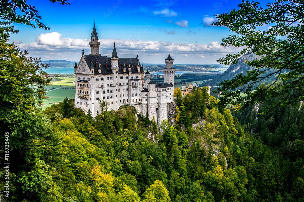 Fototapety, obrazy: Neuschwanstein Castle, Germany
