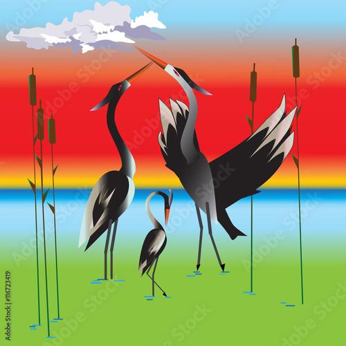 Vector illustration of stork family - 116723419
