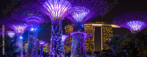 Photo Stands Singapore Night view of illuminated Supertree Grove at Gardens by the Bay in Singapore