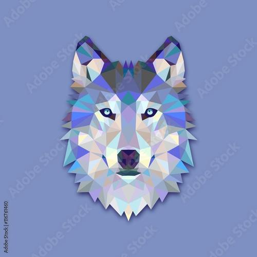 Photo  Triangle wolf design