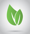 Eco icon green leaf, vector illustration on grey background