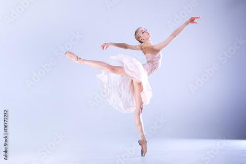 Obraz na plátně  Ballet Perfection