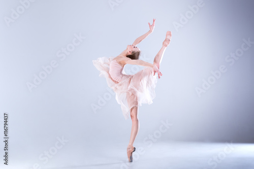 Fotografie, Obraz  Ballet Perfection