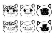 Vector Set Of Drawing Cat Face...