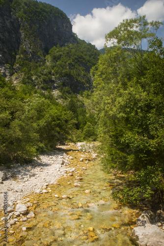 Fotobehang Olijf Soca / Isonzo river near Bovec town, Slovenia