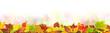 Leinwandbild Motiv Herbst 121