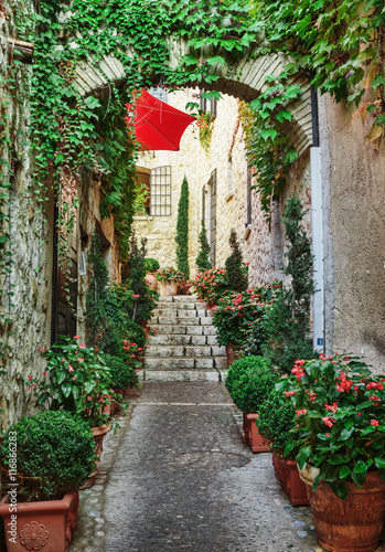 Obraz Wąska ulica z kwiatami na starym mieście we Francji - fototapety do salonu