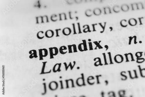 Appendix Canvas Print