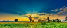 Summer Morning Landscape On Bu...