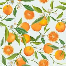 Seamless Pattern. Orange Fruits Background. Floral Pattern