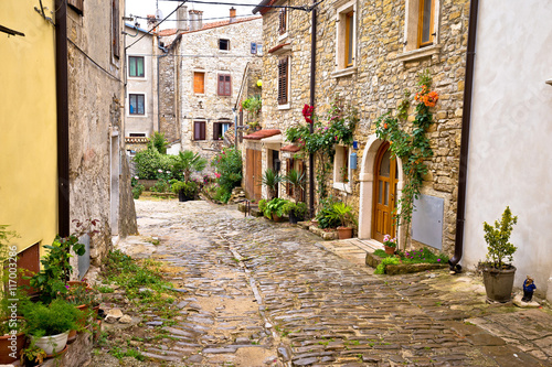 Canvas Prints Narrow alley Town of Buje cobbled old steet