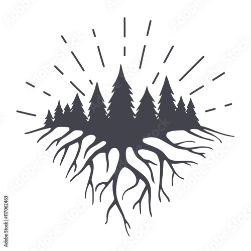 Fotografia  Vector illustration with mountains roots end forest.