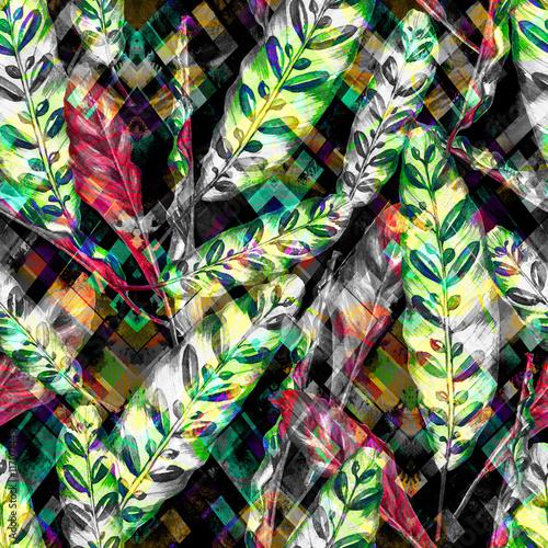 wzor-tropikalny-lisci-kolorowi-liscie-egzotyczna-calathea-insignis-roslina-na
