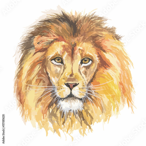 Fototapety, obrazy: Isolated watercolor lion head. African predator and exotic animal. Colorful art.