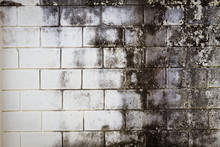 Surface Brick Grungy Wall With...