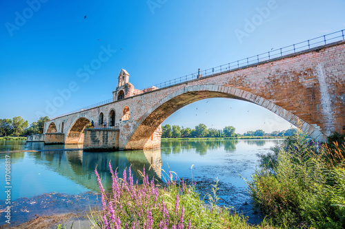 Avignon old bridge in Provence, France Wallpaper Mural