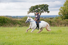 Rider Cantering In A Green Field