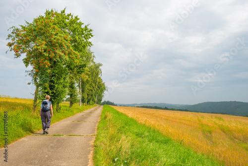 Poster Jaune Hills of the Eifel National Park in summer