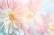 Leinwandbild Motiv Pink peony flower background