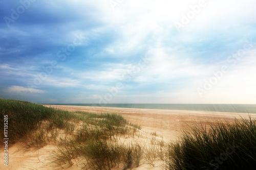 Dünen an der Nordsee Canvas Print