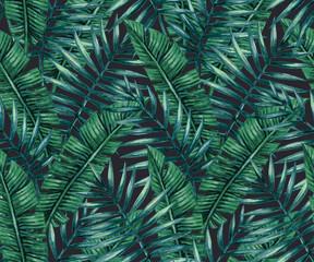fototapeta tropikalne liścia palmy