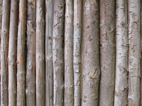 Aluminium Prints Firewood texture staccionata di legno