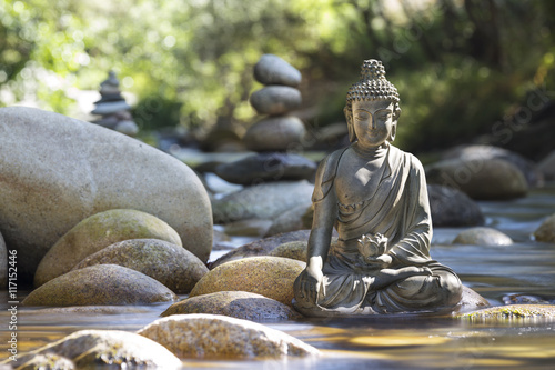 Doppelrollo mit Motiv - Statue de Bouddha